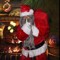 Farmer Christmas at Broadditch