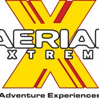 School Summer Holiday Fun with Aerial Extreme
